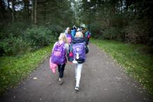 Över 5000 skolelever i Malmö kommer till Skogens dagar