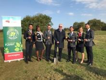 Norwegian plantará árboles en España y el Reino Unido.