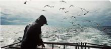 KRAV återkallar godkännande av makrillfiske