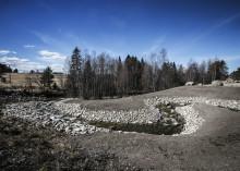 Första öringen i Billstaån på 100 år