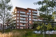 Krydderhagen nominert til Oslo bys arkitekturpris