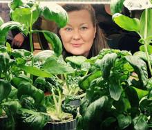 Ewa Jacobsson