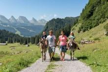 Tier-Trekking in der Schweiz