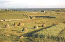 Moray candidates sought for Crofting Commission election