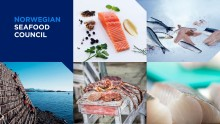 Sjømatrådet lanserer nye nettsider