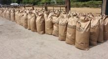 HMRC unearths seven tonnes of tobacco inside potato sacks
