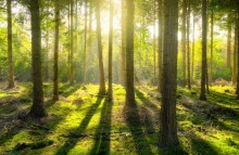 JOOL Markets partners with Climate Bonds Initiative