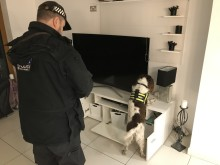 Warrants executed by Economic Crime Unit – Thames Valley