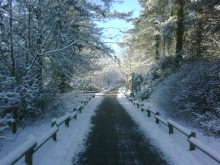 Center Parcs Longleat Forest battles the snow