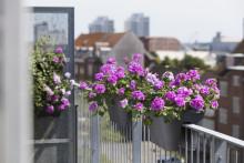 Tips för en lyckad hemester på balkongen