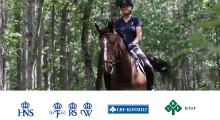 Ny digital utbildning vässar hästföretagare