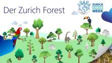 """Eine Million Bäume für den Klimaschutz: Zurich und Institut Terra pflanzen den """"Zurich Forest"""""""