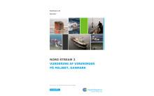 Miljøvurdering af Nord Stream 2 sendes i høring