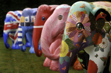 ELEPHANT PARADE MARCHES IN TO INTU POTTERIES