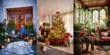 Julen har traditioner, men inga regler