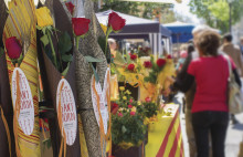 Happy Sant Jordi! Discover the Catalans' most cherished day