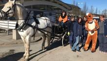 Städning med häst och vagn i Norra Biskopsgården