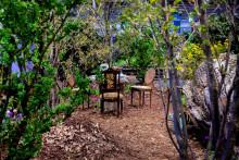 Sagolika slottsstubbar, hemligheter och aftenoon tea