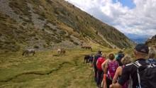 På vandretur i Andorra med Peer Gynt Tours