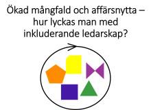 Mångfaldsakademien i Almedalen tillsammans med Veckans Affärer