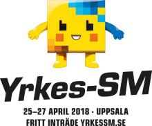 Yrkes-SM: Nu koras Sveriges bästa unga hantverkare