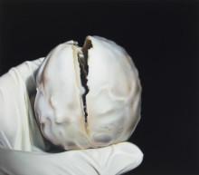 Tre nya utställningar på Galerie Forsblom: Anna Camner, Toni R. Toivonen och Ann-Sofie Claesson