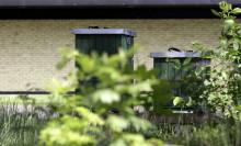 Bin blir en del av ekosystemet hos Swedese
