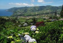 Solresor erbjuder unik matresa till Azorerna