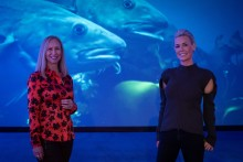 Norwegian Seafood Council joins forces with EAT ahead of UN summit on future food systems