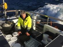 Kontrakt for økosystemovervåking ferskvann Norskehavet Nord (III) til Akvaplan-niva