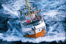October sales a record month for Norwegian seafood