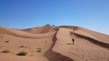 Nine day desert challenge for ellenor
