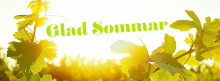 Sommarens mousserande - vilken stil väljer du?