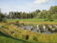 SVU-rapport med uppföljning av 25 svenska dagvattendammar (dagvattenrening)