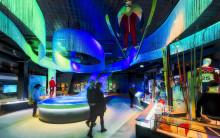 Video: OL-museet på 1 minutt