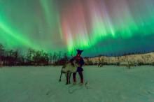 Action-packed winter adventure in Kirkenes