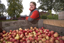 David Biun joins Brännland Cider as cidery manager