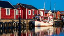 Svevia tar hand om förorenade massor från Gislövs småbåtshamn