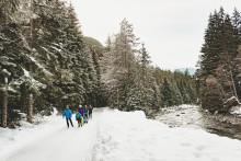 Der Speck muss weg – Winteraktivitäten in der Schweiz, mit denen die Weihnachtspfunde purzeln
