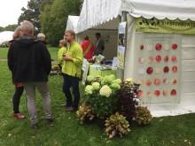 Fira Äpplets Dag  tillsammans med Riksförbundet Svensk trädgård - nationell temadag