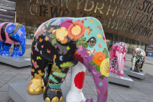 Cardiff wakes up to an invasion of elephants