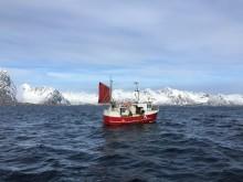 Tidenes torskeeksport i første kvartal