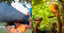 Försäljningen av Fairtrade-märkt fortsätter öka