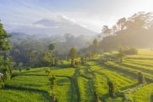 Nyt roadmap viser, hvordan Indonesien kan nå sit 2025-mål for vedvarende energi