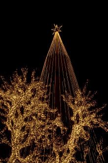 Rekordmånga danska julfirare till Göteborg