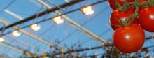 Ytterligare ett steg mot klimartsmart växthus i Bjuv