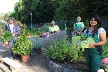 """Hephata-Gärtner: """"Die Kunden sehen bei uns Gemüse, das noch lebendig ist"""""""