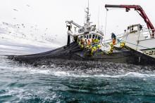 Sjømateksporten over fjoråret til tross for nedgang i september