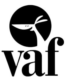 Efter stærke resultater og plads på finansloven: Viborg Kommune forlænger sin animationsstrategi