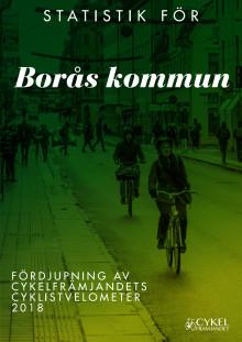 Borås kommun